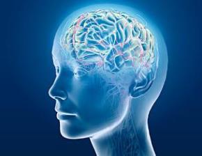 Cấu trúc não người thay đổi trong xã hội thông tin