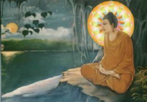 Xin đừng lạy Đức Phật