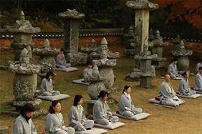 Cảnh thiền định tại các ngôi chùa Hàn Quốc.