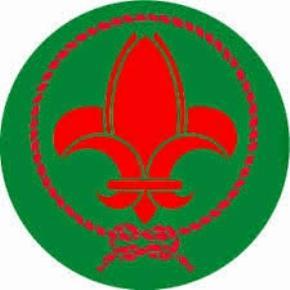 Logo của hướng đạo Việt Nam
