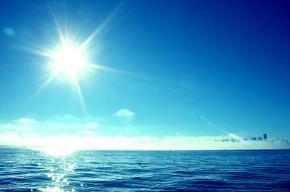 Hành trình Cuộc đời và Biển cả