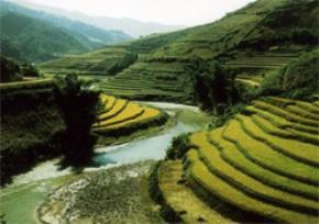 Thói hư tật xấu của người Việt: Mong yên lành, hóa ra bảo thủ; Không hình thành dư luận sáng suốt