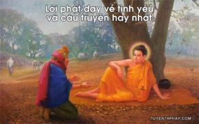Lời Phật dạy về tình yêu và câu truyện hay nhất
