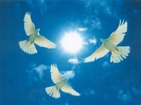Là đức tin bền bỉ, là khát vọng dâng trào...