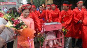 Ồng Ỉn (lợn được chọn tế thần) được đưa rước cho người dân chiêm ngưỡng khắp làng tại hội chém lợn ở làng Ném Thượng, xã Khắc Niệm, huyện Tiên Du, Bắc Ninh - Ảnh: Việt Hưng
