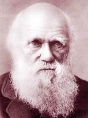Thuyết tiến hóa của Darwin: 150 năm tuổi