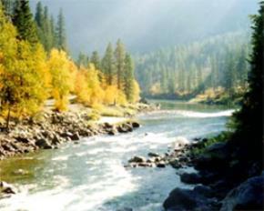 Câu chuyện của một dòng sông