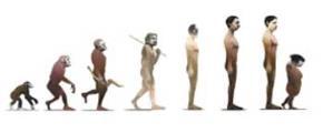 """Quá trình tiến hóa nhân loại trong """"Báo cáo tiến hóa Bravo""""."""
