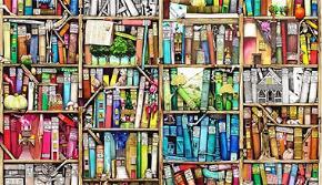 Kỳ lạ những người mua sách về chỉ để… ngắm