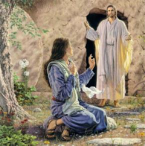 Thượng Đế và nhân sinh