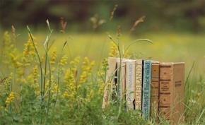 """Chưa bao giờ """"văn học là nhân học"""" bị thách thức như bây giờ"""