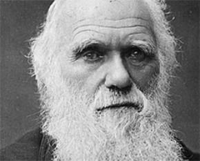 Cái mũi của Darwin (Tiếp theo)