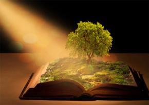 Sách là gì trong cuộc sống của chúng ta?