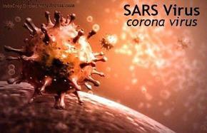 Lo sợ thái quá là một môi trường tốt cho sự lây nhiễm Coronavirus