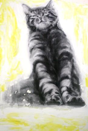 Mèo trong tục ngữ