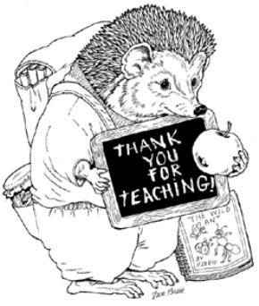 Giáo viên là nghề sang trọng