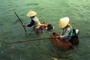 Nhận diện lại tính cách người Việt