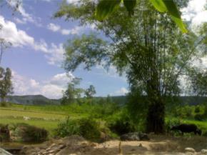 Thói hư tật xấu của người Việt: trống rỗng, dễ dãi, chê bai bừa, thô lỗ