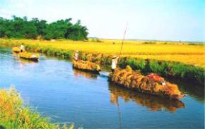 Thói hư tật xấu của người Việt: Một quan niệm đơn sơ về thế giới