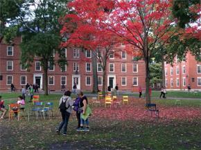 Những tháng ngày Harvard