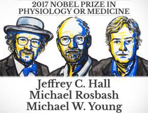 Giải Nobel Y học năm nay đã thay đổi mọi thứ chúng ta biết về y học và sinh học