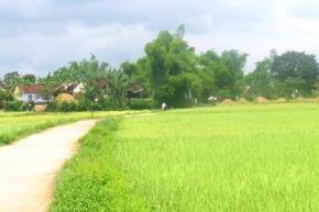Tổ chức xã hội dân sự - một di sản của Việt Nam