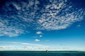 Tản mạn cho đảo xa