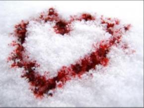 Hỡi những trái tim giá lạnh