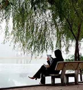 Thói hư tật xấu của người Việt: nhắm mắt bắt chước, ngại thay đổi, đổ tại trời